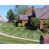 Premium Turf care & Lawn Manicuring